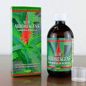 Aloe_arborescens