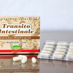 Transito_Intestinale_bassa