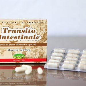 Transito_Intestinale_bassa